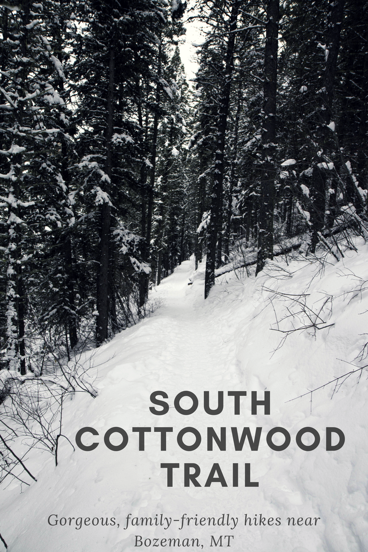 South Cottonwood Creek Trail - year-round hikes that are family and pet friendly near Bozeman, MT