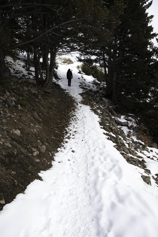 M Trail in Butte, Montana. Winter hiking ideas.
