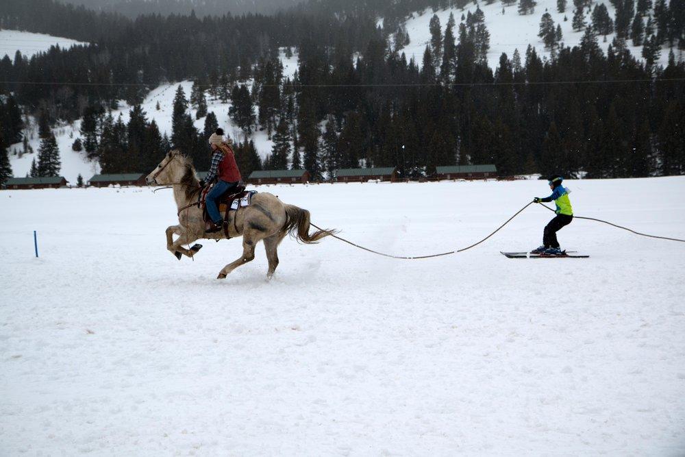 Ski Joring in Big Sky, Montana