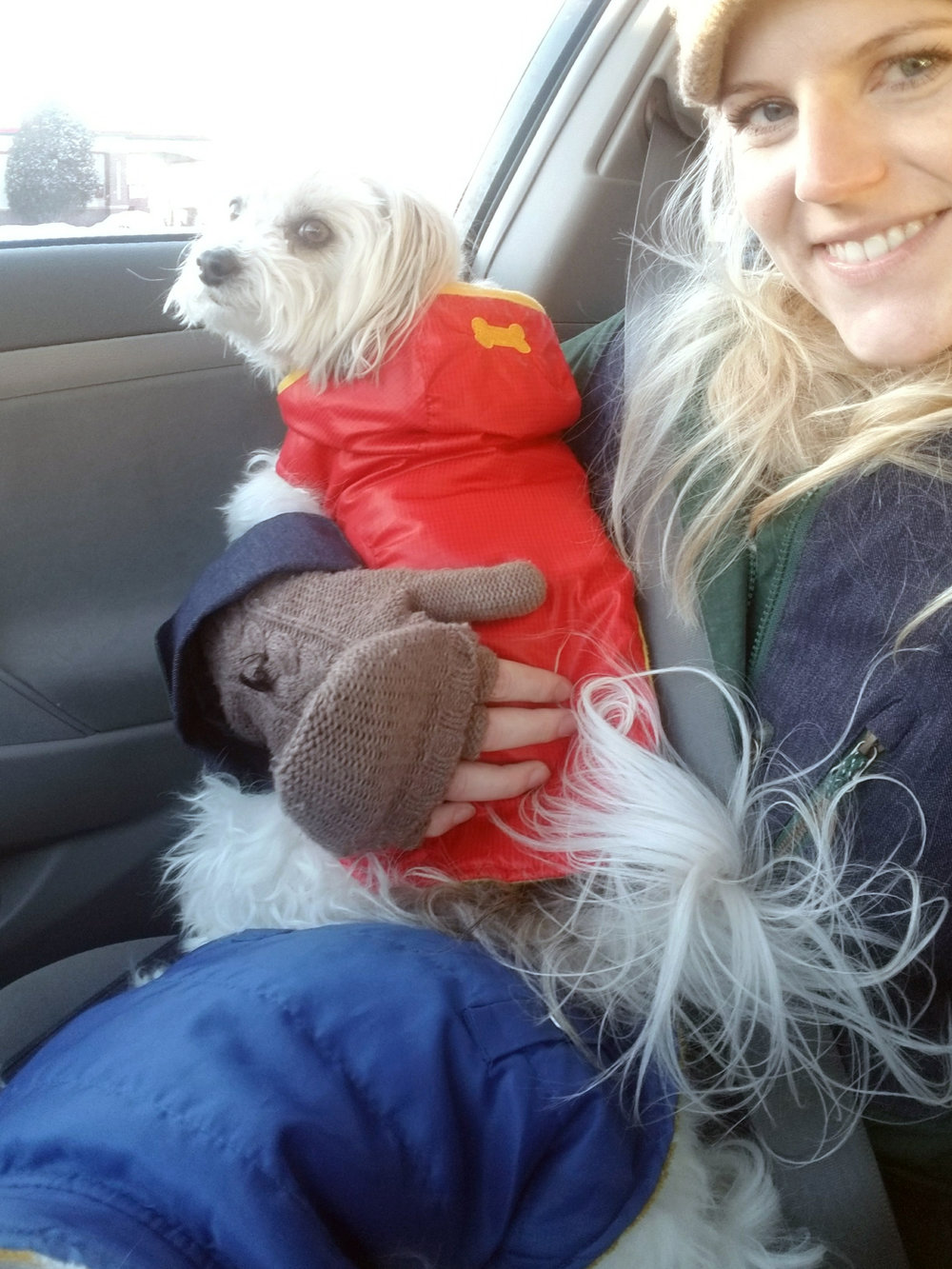 The puppies get so cold in the winter that when we take them for walks they have to wear coats. Here I am waiting with the dogs as my mom runs into the store. We took the dogs to the dog park that day.