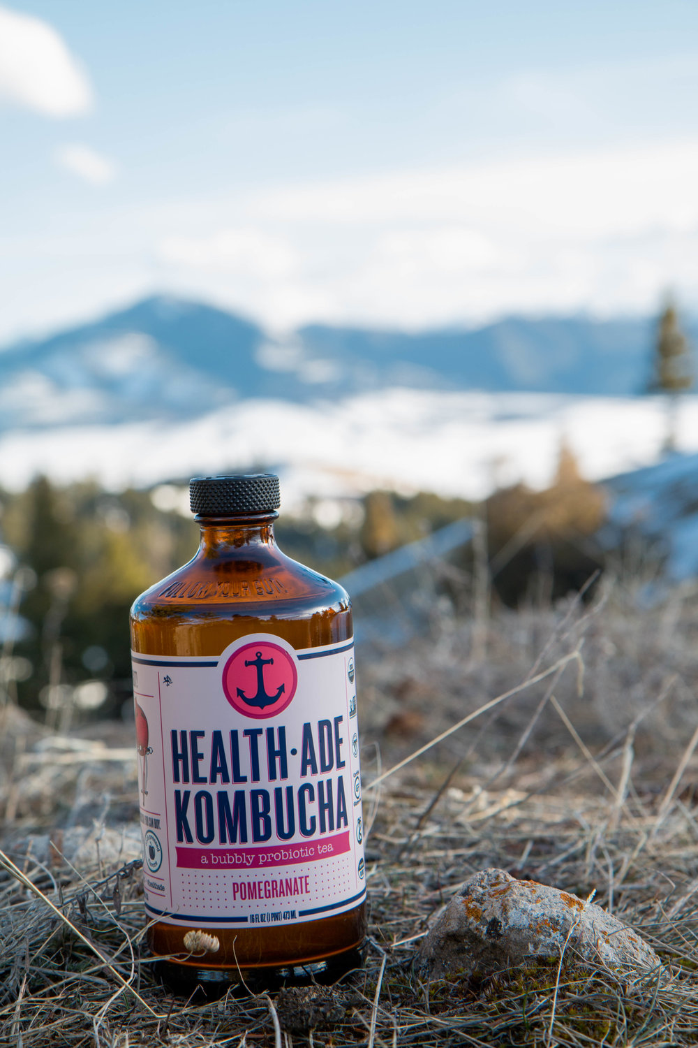 Health-Ade Kombucha. Small batch organic, vegan, raw certified, handcrafted, delicious flavors of highest quality kombucha. No GMOs. Follow your gut.