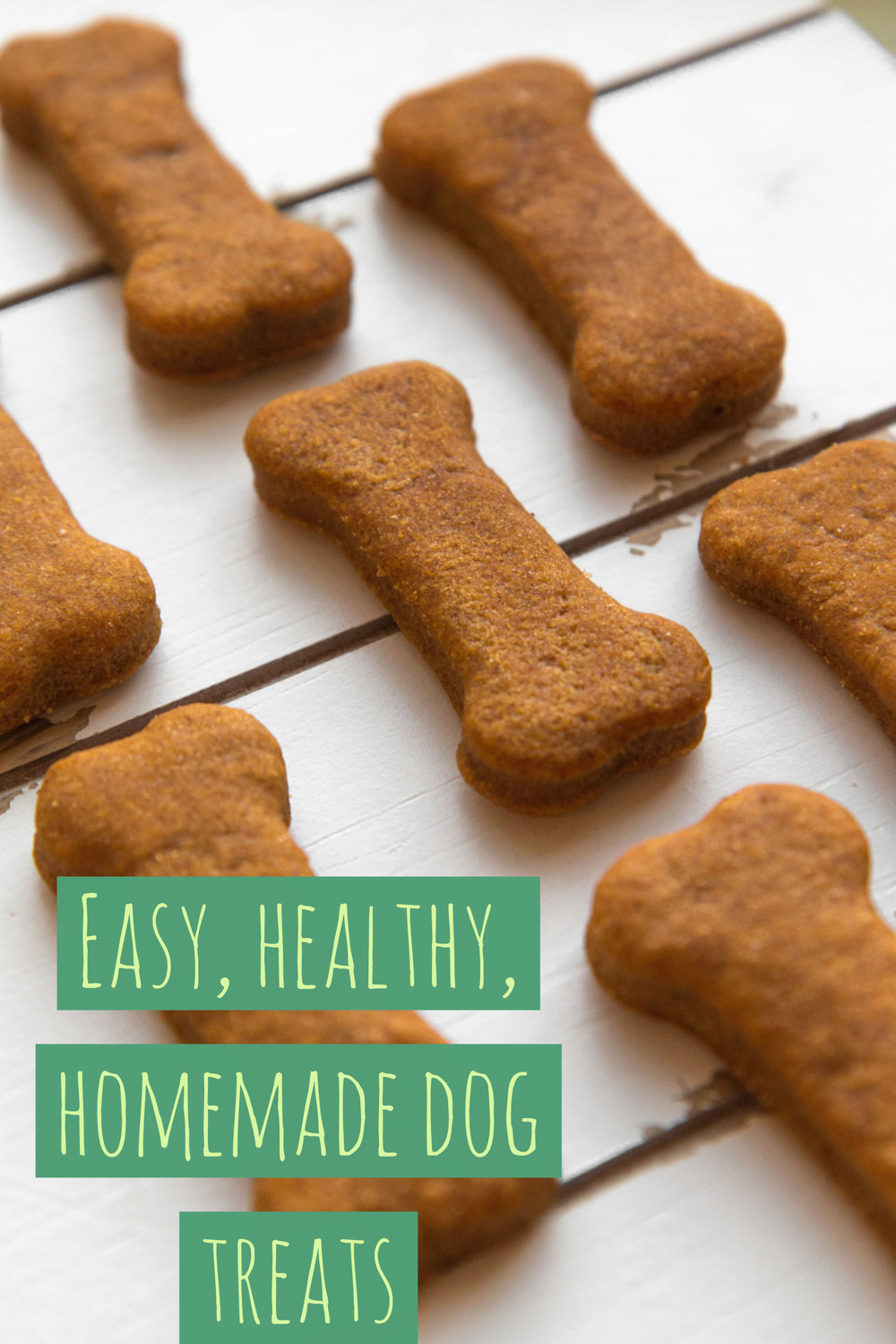 Homemade peanut butter and pumpkin dog treats that your dog will love.