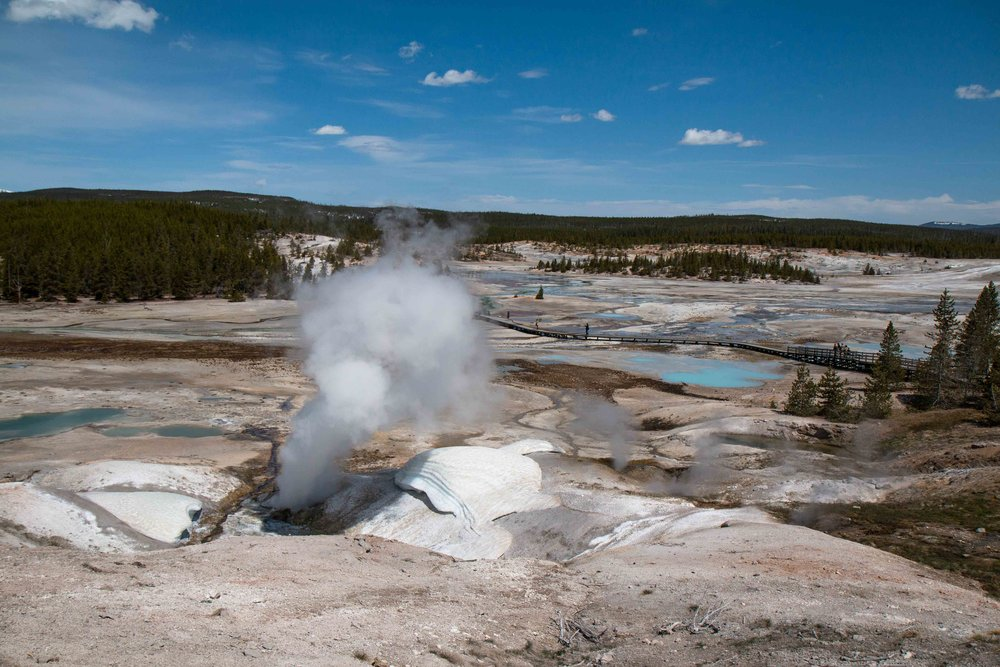 Norris Geyser Basin | The Ultimate Travel Guide for Yellowstone National Park by Travel + Lifestyle blogger Bri Sul