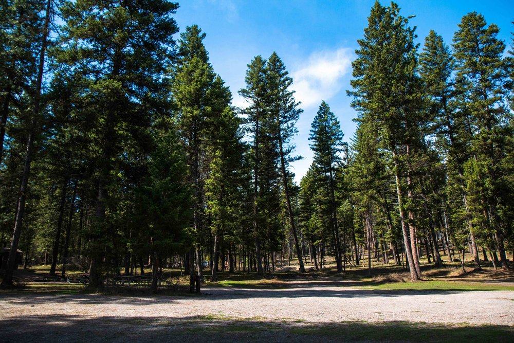 The beautiful Holland Lake Campground near Swan Lake, Montana. The BEST kept Montanan Secret.