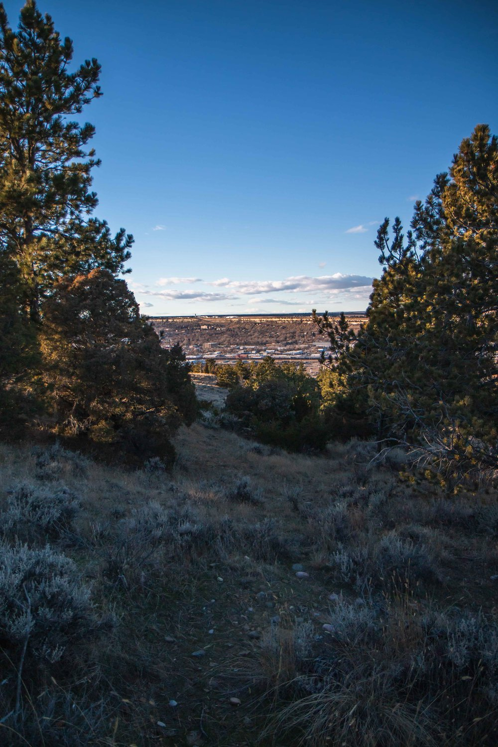 Four Dances Trail is a 2.6 mile loop trail located near Billings, Montana. The trail is rated as moderate and primarily used for hiking and trail running. Dogs are also able to use this trail but must be kept on leash.