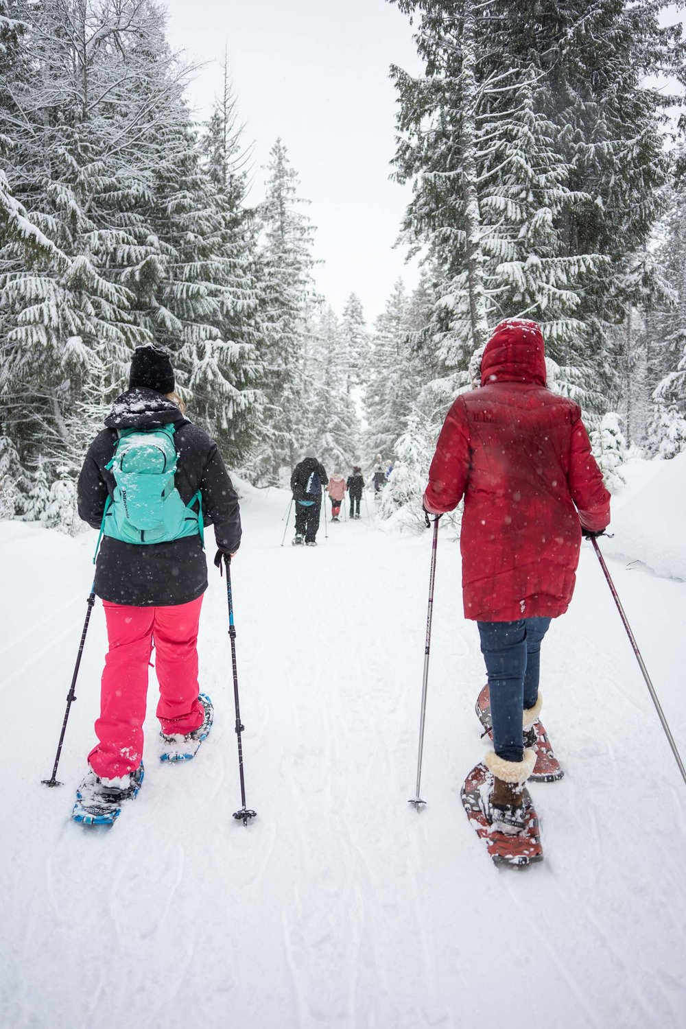 Tips and tricks on snowshoeing in Whitefish, Montana