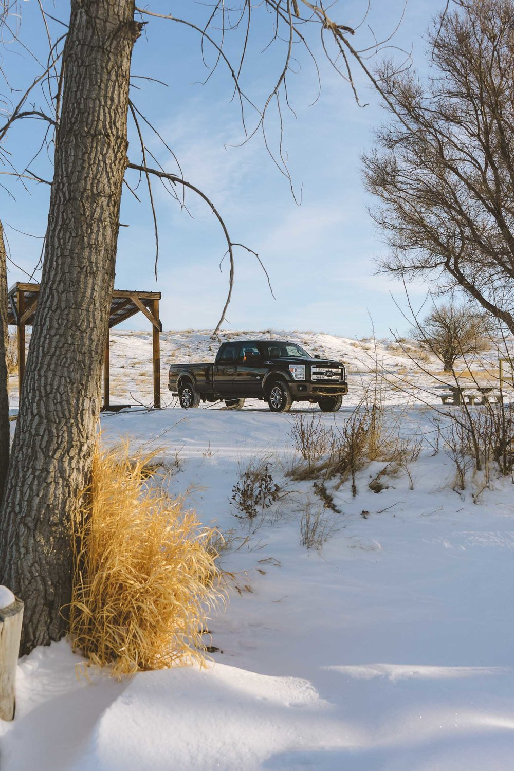 Ford truck tucked between two trees while ice fishing at Petrolia Lake near Winnett, Montana.