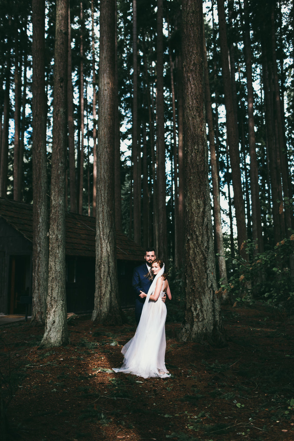 tall trees and bride and groom in a sunny patch at kitsap memorial state park