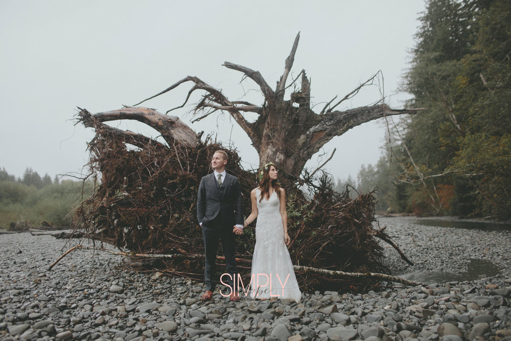 simply elope seattle washington