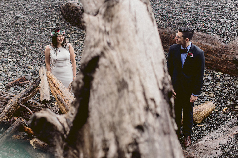 driftwood, bride, and groom on the beach