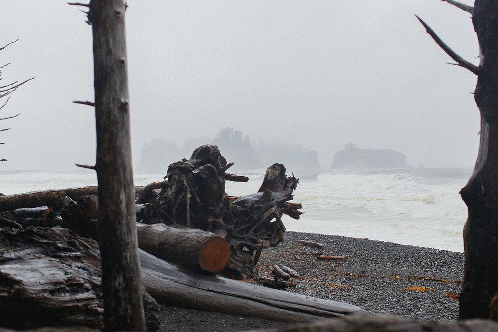 Rialto beach WA on a rainy day