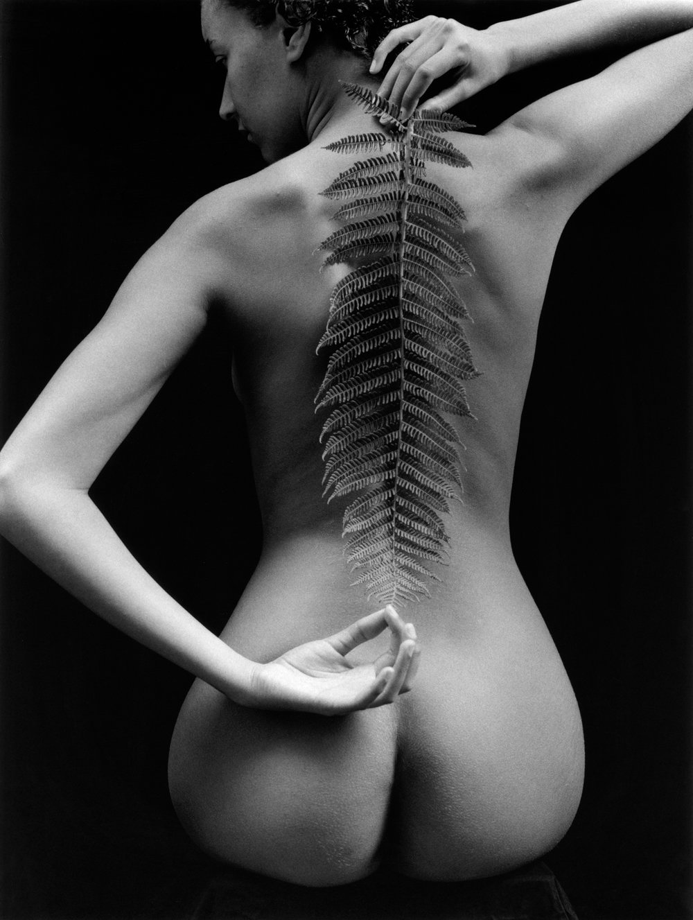 kim-weston-nude-and-fern-2008.jpg