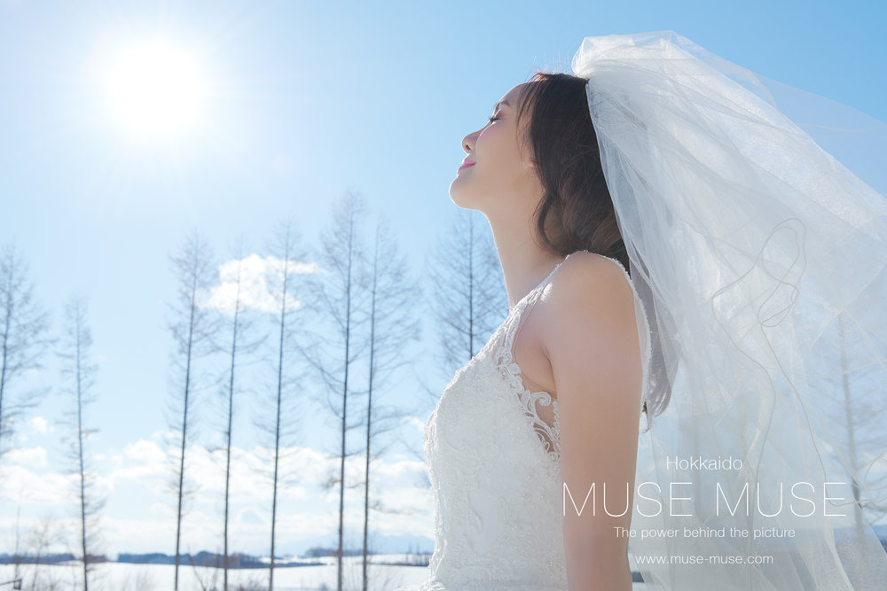 Muse Blog Updated :  Celine & Nick 北海道 Hokkaido Pre-Wedding ( 15 Jan 2018 )