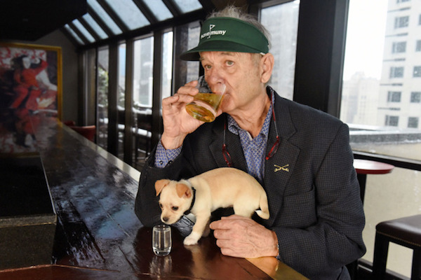 bill-murray.w710.h473.jpg