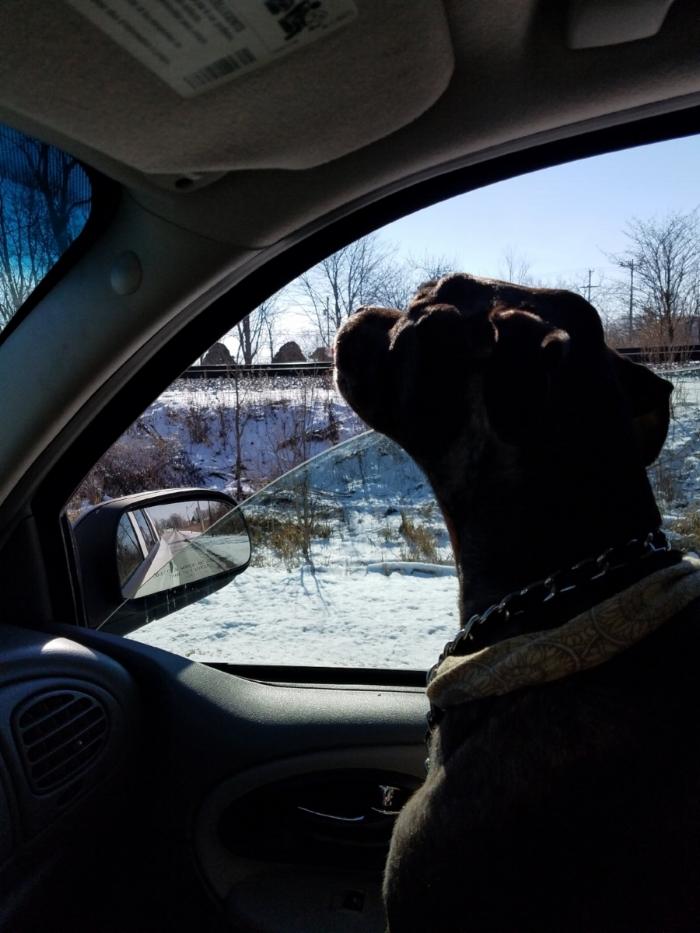 His last car ride.