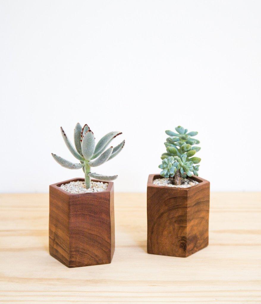 Rose & Fitzgerald Planter, $60