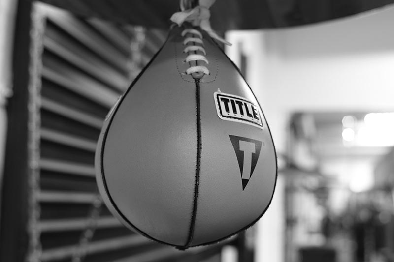 speedbag.jpg