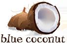 Blue Coconut Apple and Cinnamon Cake