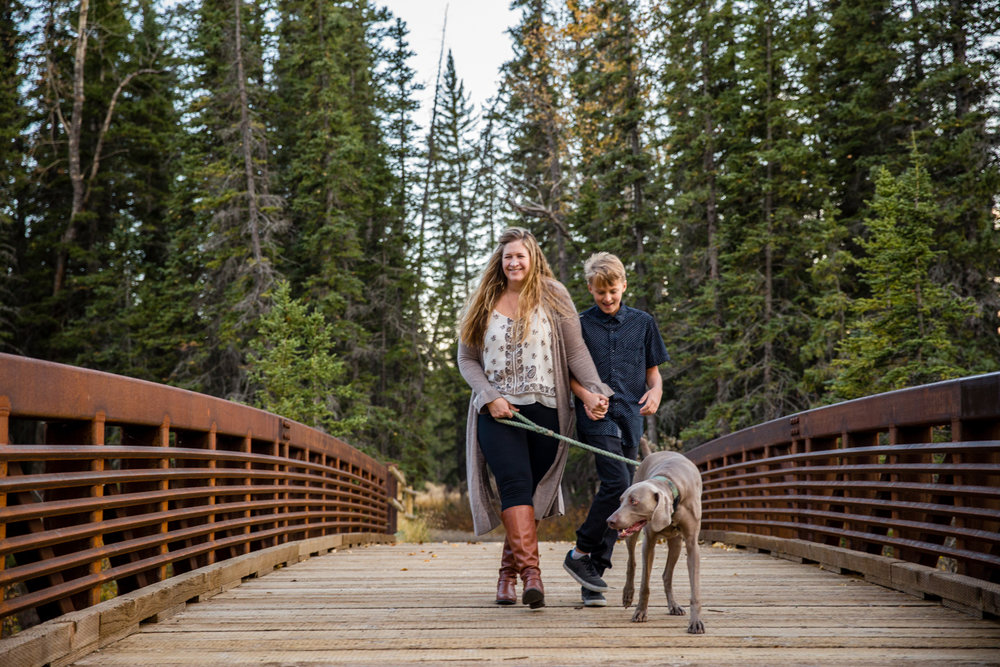 griffith woods, family photography, calgary, weimaraner,
