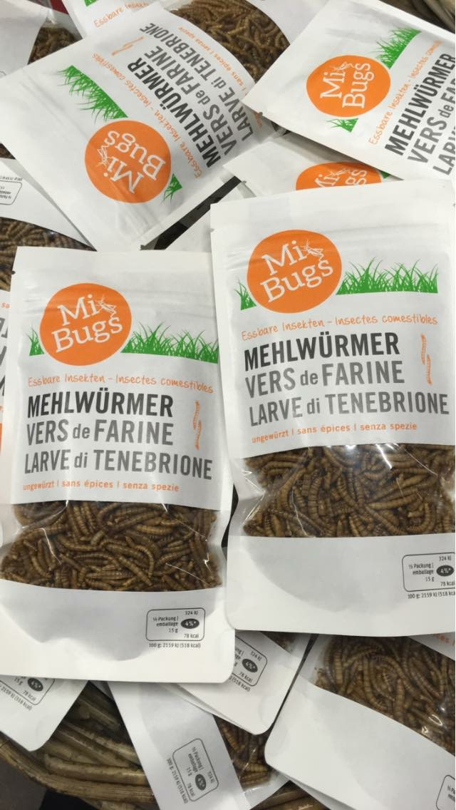 dried bugs…and they aren't even chocolate covered!!!