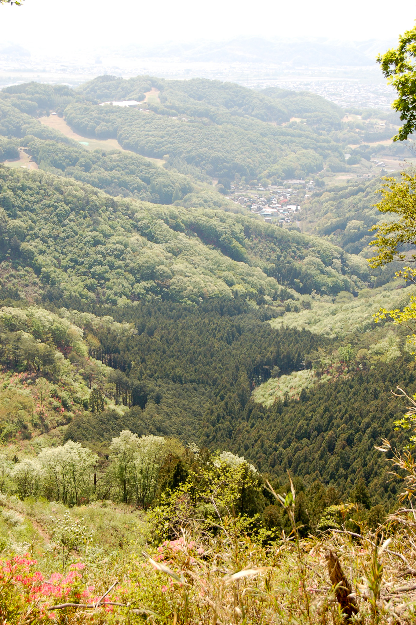 Japan's Ashikaga range