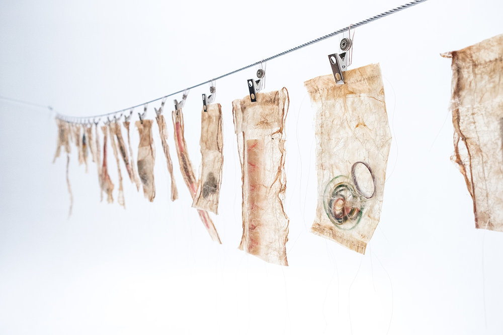 Consumed, 2017 Dimensions variable, Beluga intestine, thread, found objects