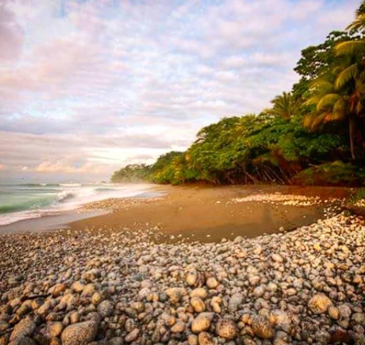 CR Beach View .jpg