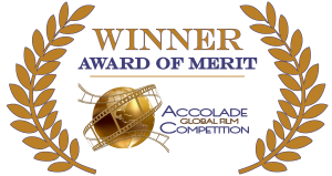Accolade-Merit-Logo-Color-300x159.png