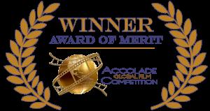 Accolade-Merit-Logo-Color-300x159.png
