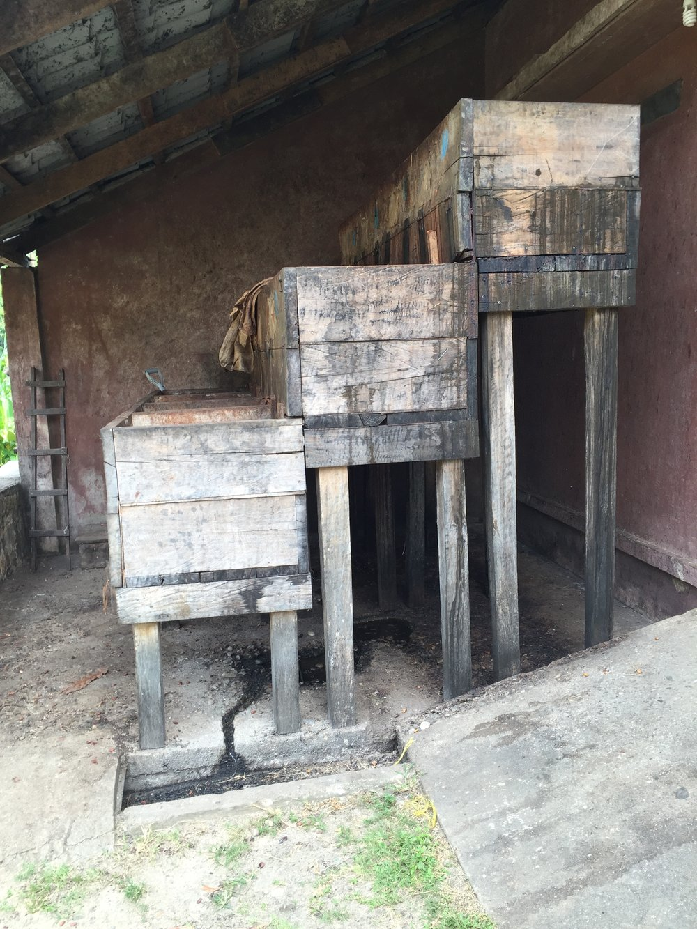 3 Box Fermentation