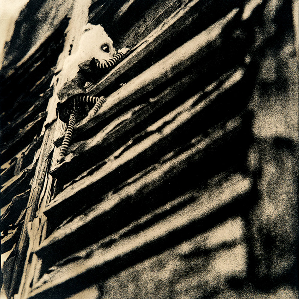 "©KatarzynaDerda     series ""If Only"" ,    photograph #5, lith print    Chicago 2009 , unique, edition of 1"
