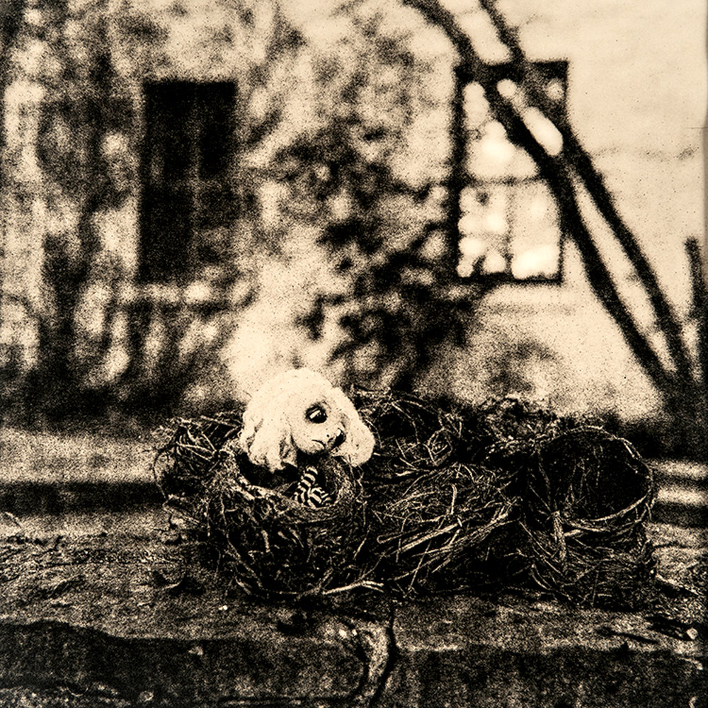 "©KatarzynaDerda     series ""If Only"" ,    photograph #4, lith print    Chicago 2009 , unique, edition of 1"