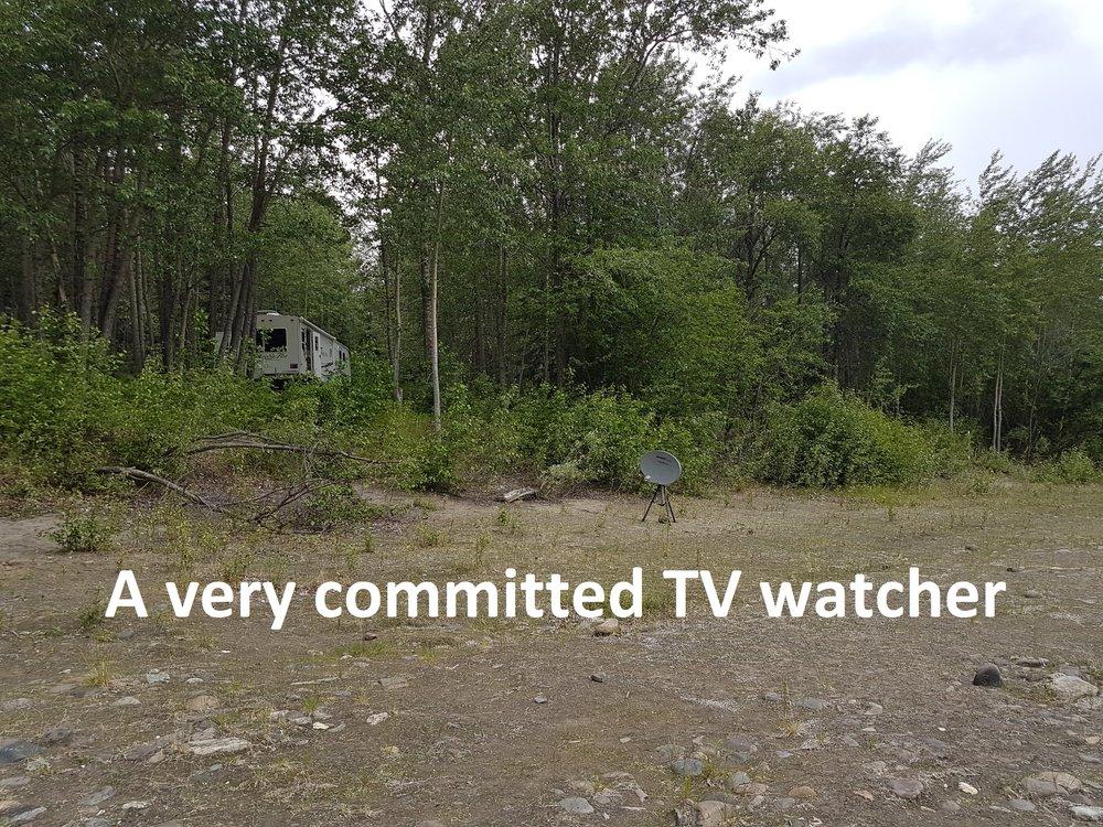tv watcher.jpg