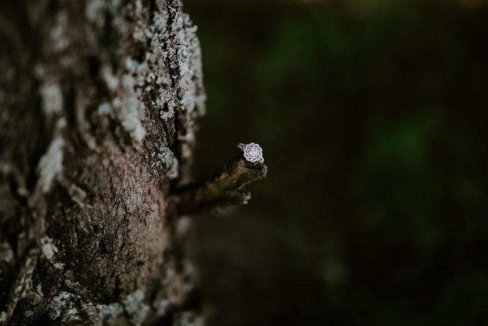 Courtney-Jordan-Chattanooga-Nashville-Tennessee-Wedding-Elopement-Photographer-71.jpg