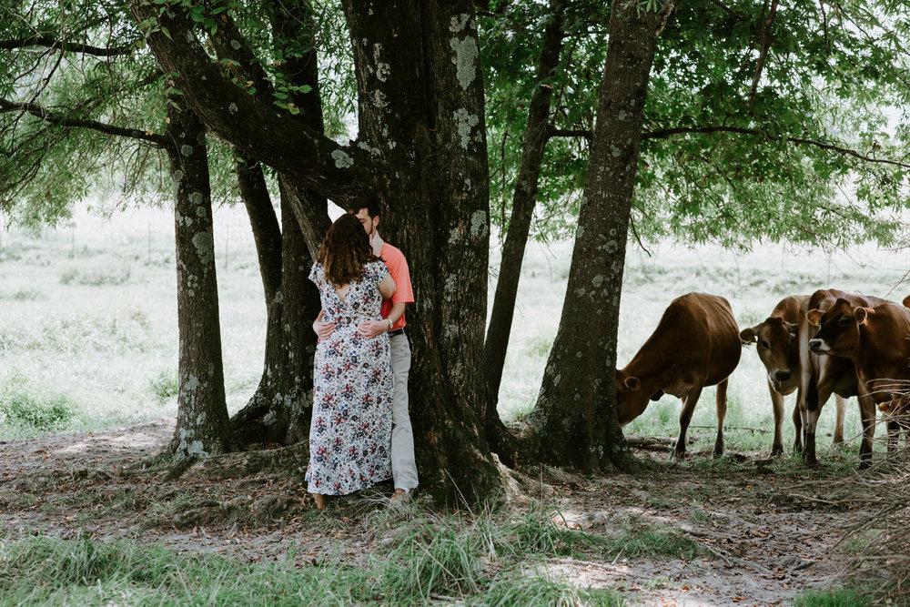 Darby + Connor + Chattanooga + Nashville + Tennessee + Wedding + Photographer-27.jpg