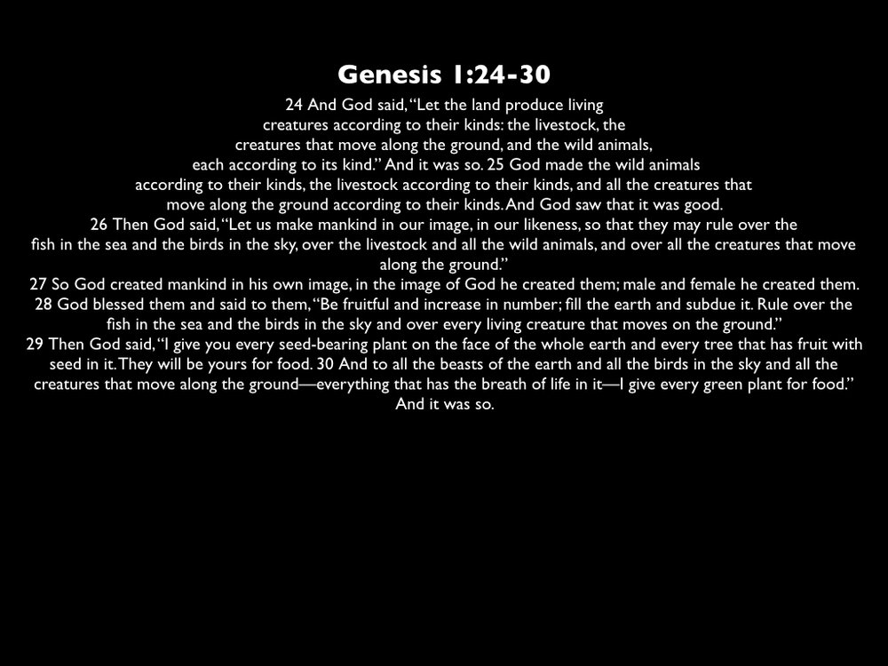 12_30_18-sermon visuals.001.jpeg