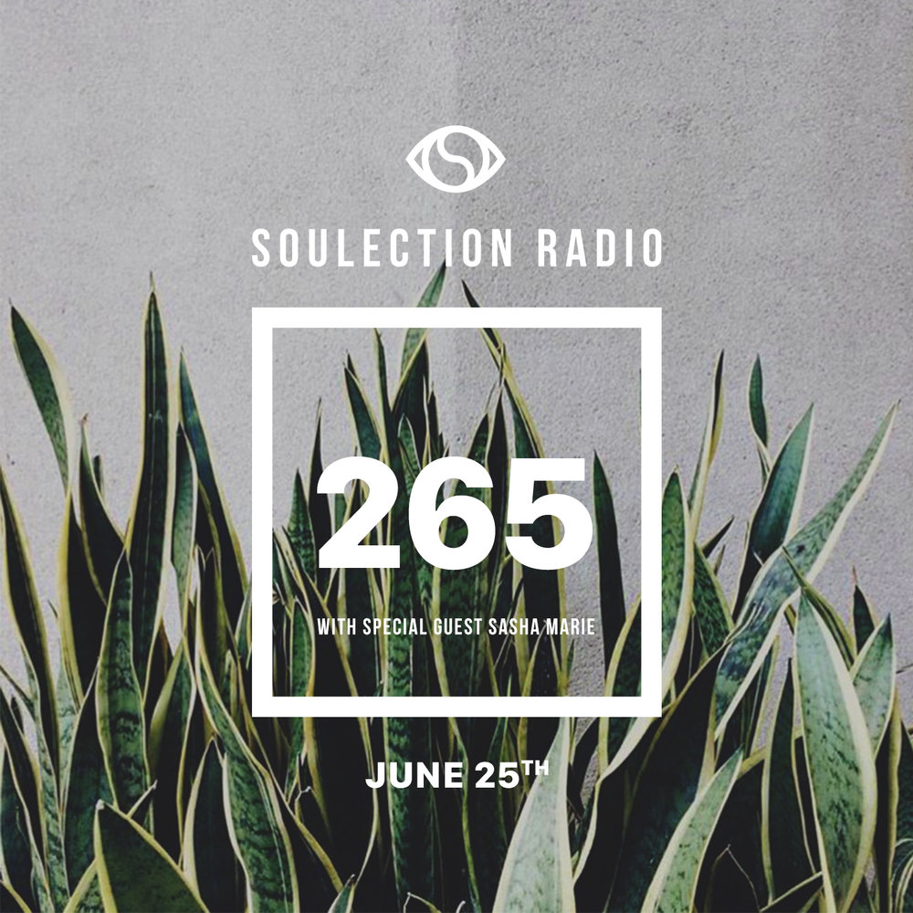 soulection 265.jpg