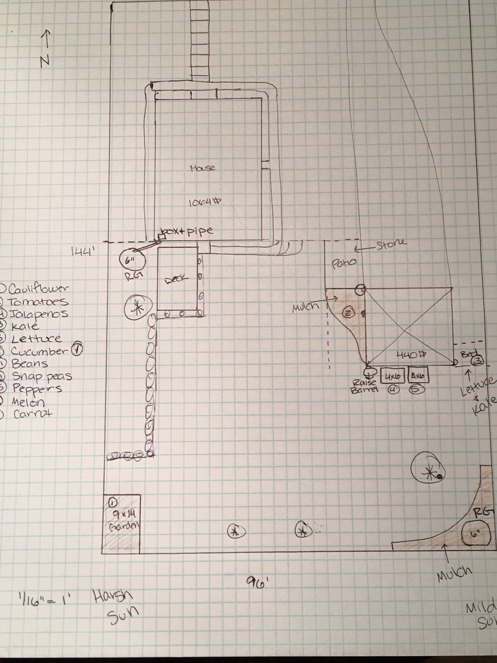 Preliminary sketches of the rain garden (RG) installations in my backyard