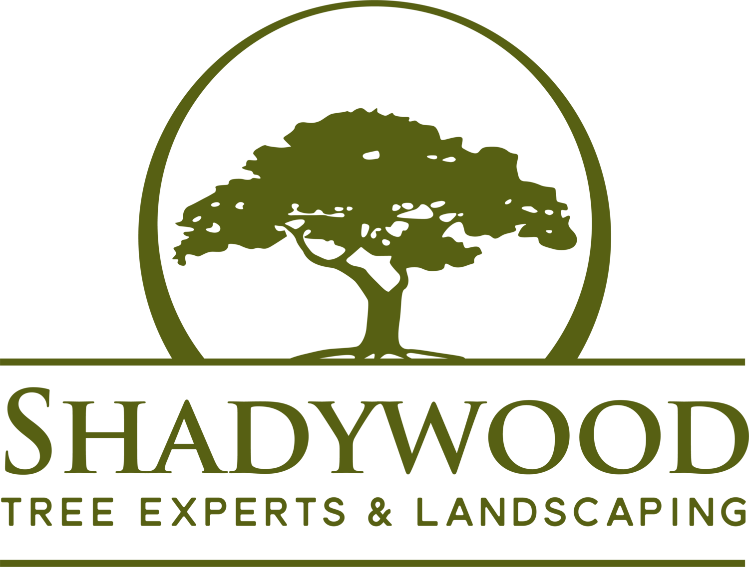 Shadywood Tree Experts and Landscaping