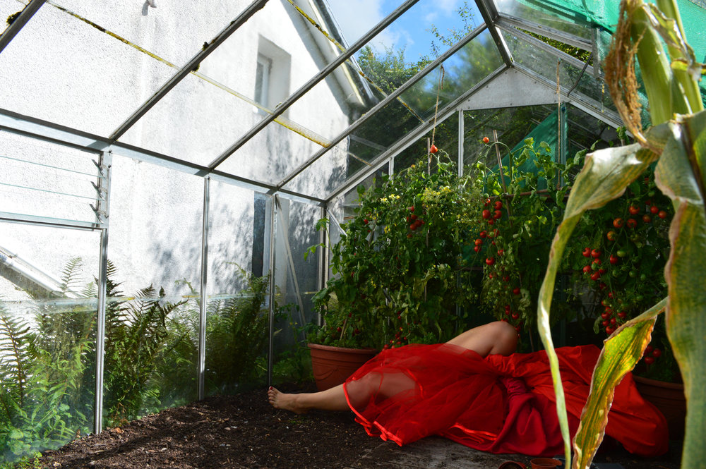 The Greenhouse,  2015 ,  Robyn LeRoy-Evans,  http://robynleroyevans.com/