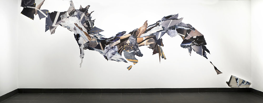 Leah Dyjak,  Moonrakers , 15x38', Photographic installation, 2018
