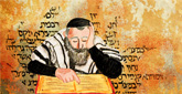 Purim Study:  Essays, insights and questions about the holiday of Purim.