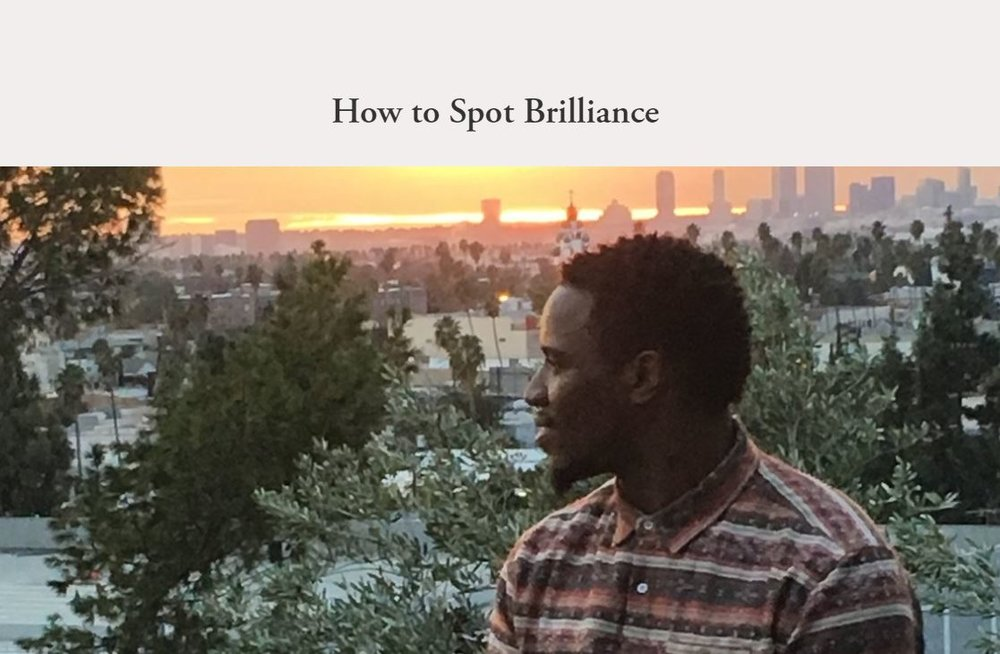 How to Spot Brilliance.JPG