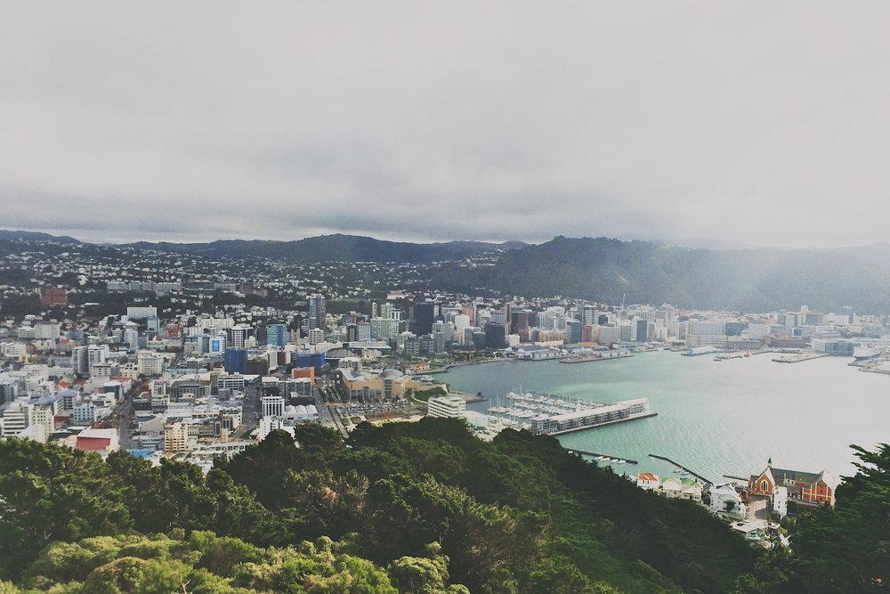Wellington Travel Guide