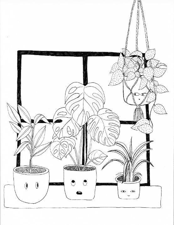 plants for erin.jpg