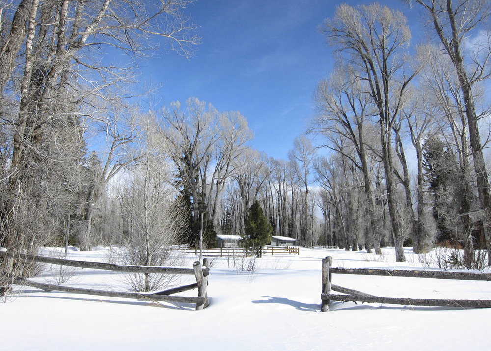 Wondeland Snow_02.jpg