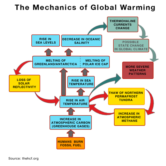 Report 3 how do greenhouse gases cause global warming hinkle when you grasp even initially the operations of reinforcing feedback loops and the incalculable momentum they contribute to global warming it is easier ccuart
