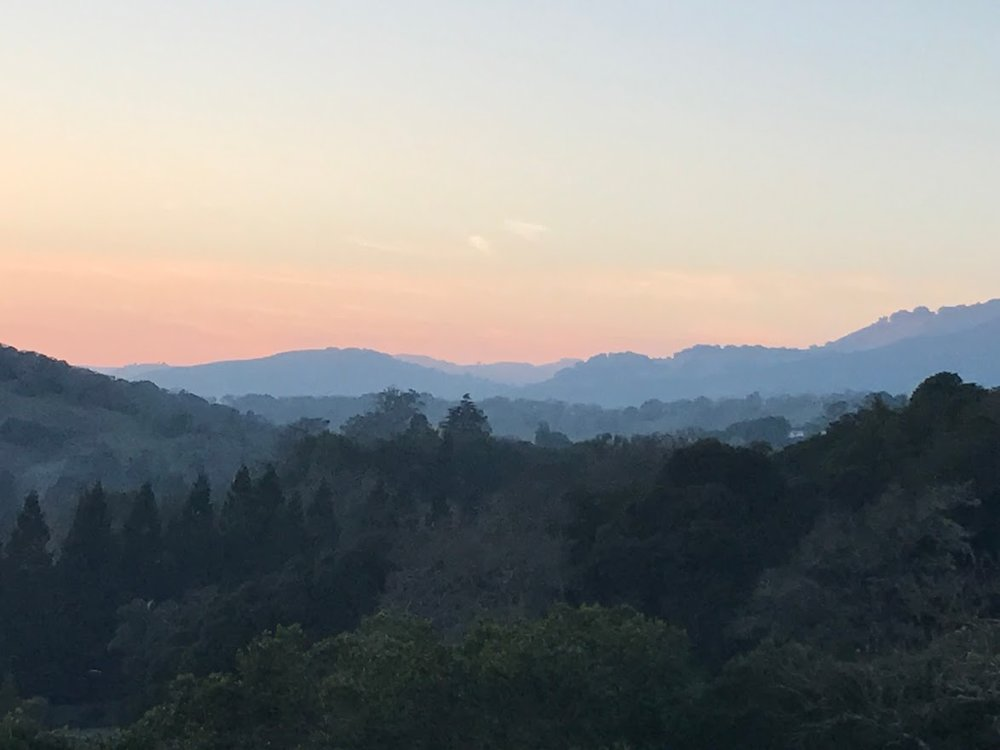 marin-hills.jpg