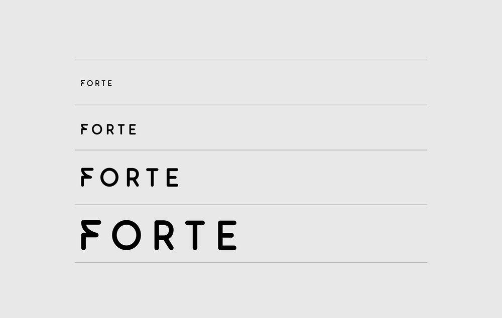 FORTE_DEC-07.jpg