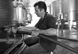 Simone Franconi – Cellar Master & Estate Manager    Simone is our skilled and attentive estate manager and cellar master, and has worked closely with some of Italy's best-known winemakers.